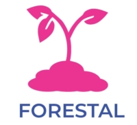 Sector Forestal